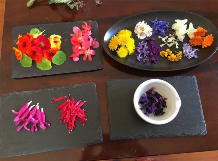 Foto dei fiori presentati